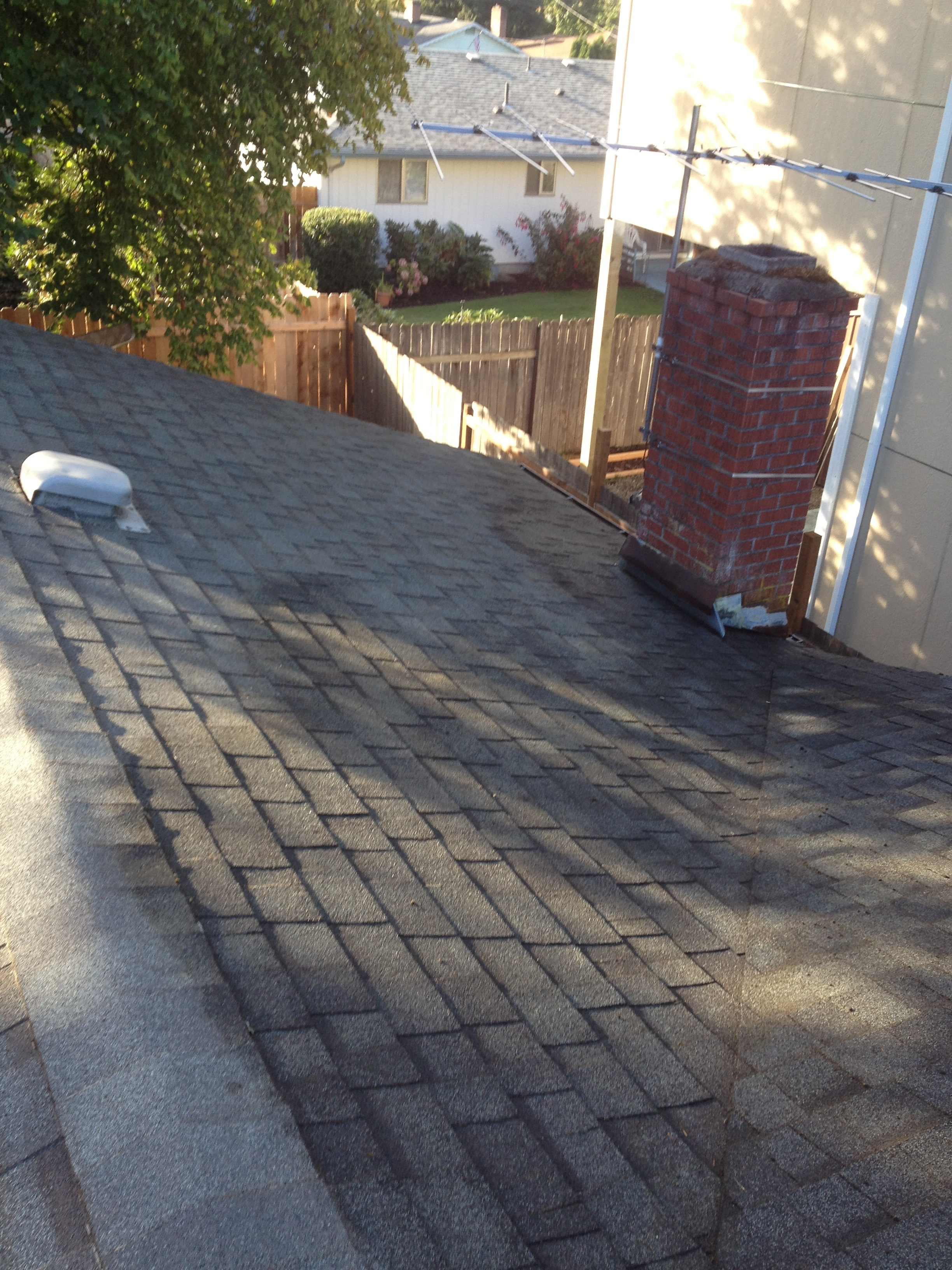 Roof Cleaning Amp Moss Removal Professional Services
